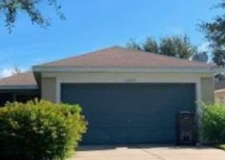 Pre Foreclosure in Riverview 33569 HAMMOCKS GLADE DR - Property ID: 1070899130