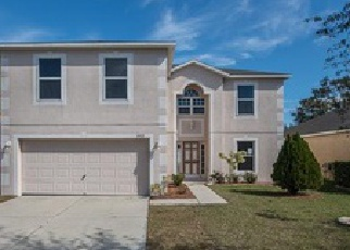 Pre Foreclosure in Riverview 33569 SMALL MOUTH WAY - Property ID: 1071108491