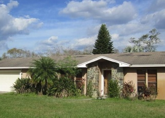 Pre Foreclosure in Orlando 32825 GRAN PASEO DR - Property ID: 1071275806