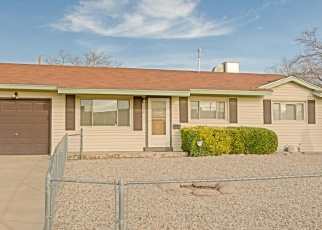 Pre Foreclosure in Albuquerque 87123 GENERAL STILWELL ST NE - Property ID: 1073794590