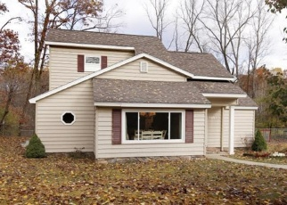Pre Foreclosure in Allegan 49010 113TH AVE - Property ID: 1074102485