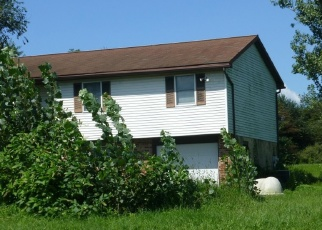 Pre Foreclosure in Hamburg 19526 SCHOOLHOUSE RD - Property ID: 1075777291
