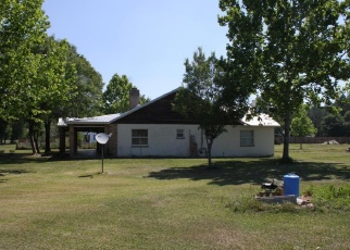 Pre Foreclosure in Lawtey 32058 NW 216TH ST - Property ID: 1083663453