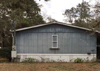 Pre Foreclosure in Lecanto 34461 W CARDAMON PL - Property ID: 1087633247