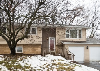 Pre Foreclosure in Palatine 60067 N STEPHEN DR - Property ID: 1095040709
