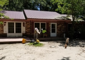 Pre Foreclosure in Ridgeland 29936 TALLAHASSEE LOOP - Property ID: 1096847796