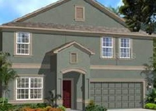 Pre Foreclosure in Riverview 33579 EAGLE SWOOP PL - Property ID: 1098443769