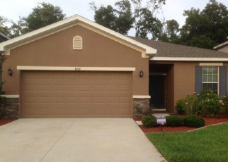 Pre Foreclosure in Riverview 33569 TIDAL BREEZE DR - Property ID: 1100002962