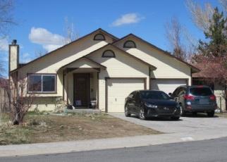 Pre Foreclosure in Gardnerville 89460 RENEE CT - Property ID: 1102240563