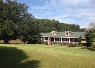 Pre Foreclosure in Umatilla 32784 SE HIGHWAY 450 - Property ID: 1104643282