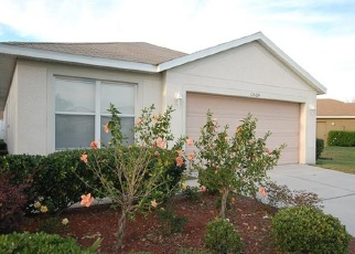 Pre Foreclosure in Riverview 33569 BAY GARDENS LOOP - Property ID: 1112807560