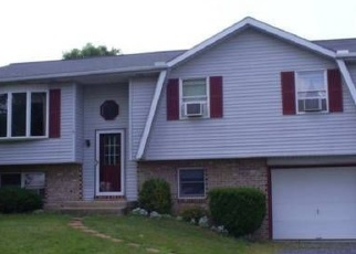 Pre Foreclosure in Hamburg 19526 SCHOOLHOUSE RD - Property ID: 1122510430