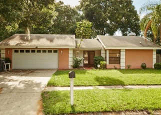 Pre Foreclosure in Tampa 33624 RAMBLEBROOK LN - Property ID: 1137028841