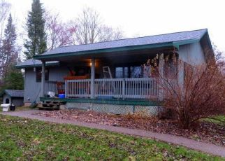 Pre Foreclosure in Lake Nebagamon 54849 S COUNTY ROAD P - Property ID: 1151853826