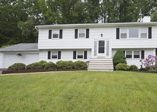 Pre Foreclosure in Budd Lake 07828 BROOKSIDE DR - Property ID: 1168802981