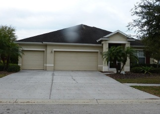 Pre Foreclosure in Apollo Beach 33572 CARRINGTON OAKS LN - Property ID: 1171200888