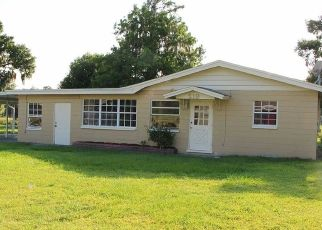 Pre Foreclosure in Wauchula 33873 RIVERSIDE DR - Property ID: 1177812986
