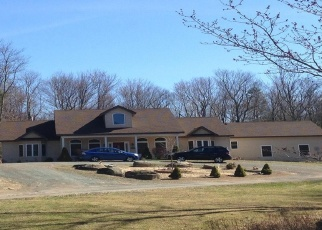 Pre Foreclosure in Monticello 12701 STATE ROUTE 42 - Property ID: 1185956667