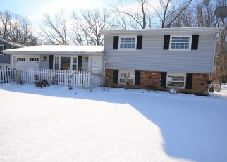 Pre Foreclosure in Vermilion 44089 IDLEVIEW DR - Property ID: 1191905214