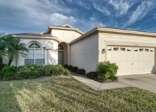 Pre Foreclosure in Sun City Center 33573 FEATHER STAR PL - Property ID: 1196074293