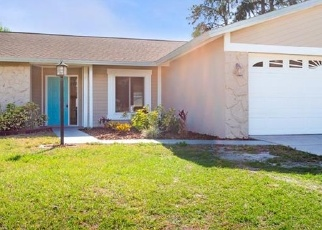 Pre Foreclosure in Valrico 33596 SAND PEBBLE DR - Property ID: 1199950364