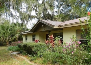 Pre Foreclosure in Riverview 33569 POTTS RD - Property ID: 1214375930