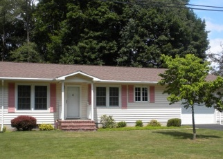 Pre Foreclosure in Bath 14810 CLUB VIEW DR - Property ID: 1237226780
