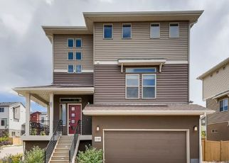 Pre Foreclosure in Castle Rock 80109 SWEET WIND AVE - Property ID: 1266853527