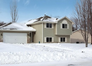 Pre Foreclosure in Buffalo 55313 4TH AVE S - Property ID: 1270638492