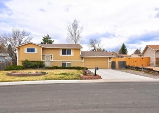 Pre Foreclosure in Littleton 80124 DENEB DR - Property ID: 1272541490