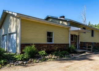 Pre Foreclosure in Bath 48808 PARK LAKE RD - Property ID: 1286291695
