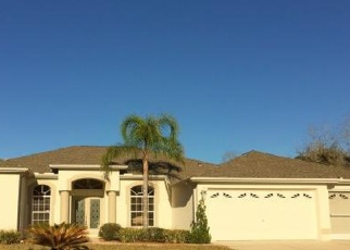 Pre Foreclosure in Homosassa 34446 BLACK WILLOW CT S - Property ID: 1288030440