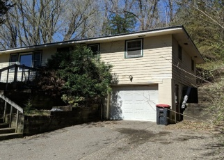Pre Foreclosure in Red Wing 55066 TWIN BLUFF RD - Property ID: 1299301259