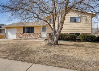 Pre Foreclosure in Fountain 80817 CLEARVIEW DR - Property ID: 1300134738
