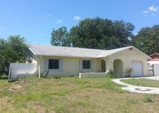 Pre Foreclosure in Brandon 33511 BRANDON VIEW DR - Property ID: 1309945345