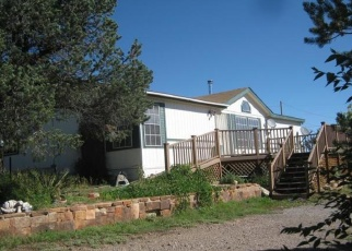 Pre Foreclosure in Edgewood 87015 BALLENGER RANCH RD - Property ID: 1311623222