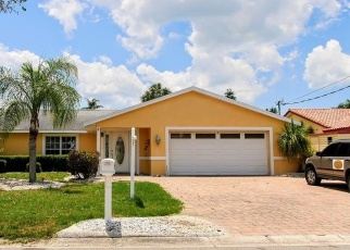 Pre Foreclosure in Apollo Beach 33572 GRAN KAYMEN WAY - Property ID: 1316163259