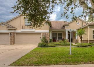 Pre Foreclosure in Lithia 33547 JAEGERGLEN DR - Property ID: 1327922429