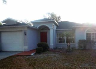 Pre Foreclosure in Brandon 33511 MOHRLAKE DR - Property ID: 1327972803