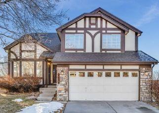 Pre Foreclosure in Castle Rock 80109 N BLAZINGSTAR TRL - Property ID: 1328241718