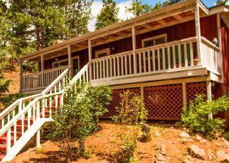 Pre Foreclosure in Sedalia 80135 EVERGREEN PL - Property ID: 1328248276