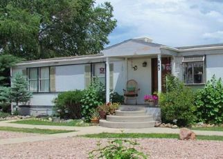Pre Foreclosure in Penrose 81240 4TH ST - Property ID: 1328326687