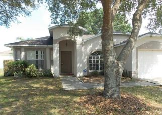Pre Foreclosure in Brandon 33511 MOHRLAKE DR - Property ID: 1328634577