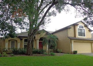 Pre Foreclosure in Dover 33527 ABBEY RIDGE DR - Property ID: 1328642908