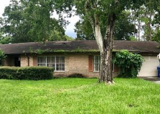 Pre Foreclosure in Riverview 33578 KRYCUL AVE - Property ID: 1328645978