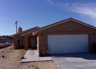 Pre Foreclosure in Twentynine Palms 92277 INDIAN COVE RD - Property ID: 1330831449
