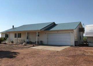 Pre Foreclosure in Penrose 81240 2ND ST - Property ID: 1336947315