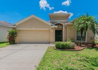 Pre Foreclosure in Valrico 33594 EMERALD HILL WAY - Property ID: 1337321343
