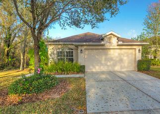 Pre Foreclosure in Valrico 33594 CRYSTAL CARBON WAY - Property ID: 1337324415