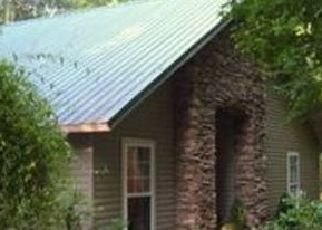Pre Foreclosure in Martin 30557 WILSON RD - Property ID: 1339070171